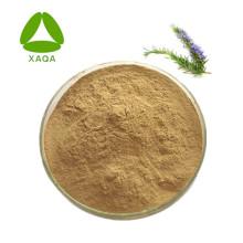 Natural Rosemary Extract Powder 10:1
