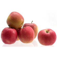Новая культура (SGS, ISO и GLOBALGAP) Гала-яблоко