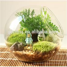 Vase en verre clair en verre de vase en cristal pour des décorations à la maison