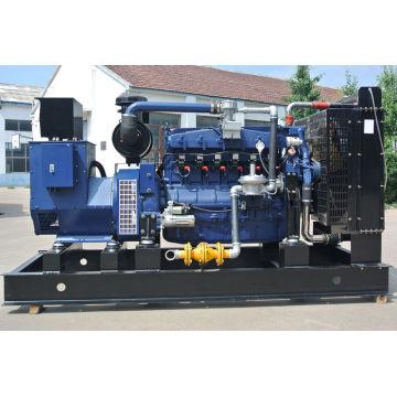 200KW Styre LPG gas generator