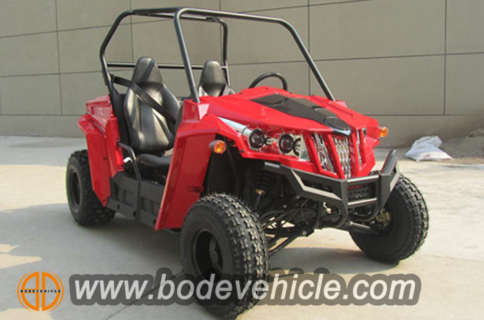 150cc buggy for kids (2)