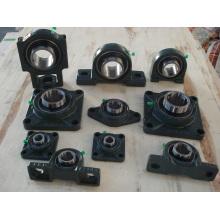 Best Quality Bearing Units (UCP, UCF, UCFL, UCFC, UCT, UCPH, UCPA, UCHA, UCFA, UCFB)