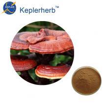 30% экстракт грибов ганодерана рейши