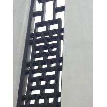 Exposition d'art extérieure d'écran de décoration de mur de WPC