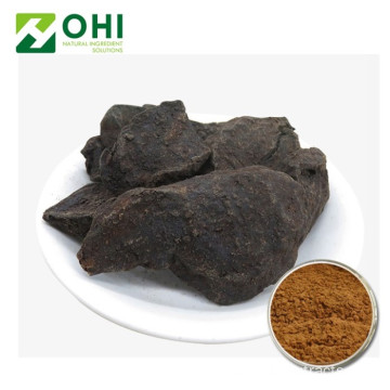 Natural Polygonum Multiflorum Extract