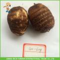High Quality Chinese Fresh Taro 40g