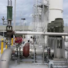 Bomba centrífuga petroquímica vertical estándar Vs1 API610