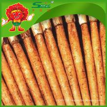 Yunnan Native Burdock Root para a beleza da pele