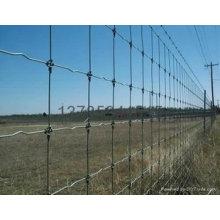 Clôture de terrain agricole et de prairie (ISO)