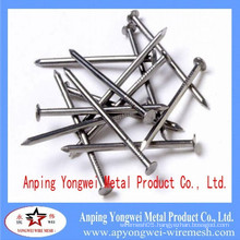 Common Nails/Nail, Common wire nail, Common iron Nails