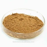 Manufacturer Pure Natural High Quality Ginkgo Biloba Extract, Ginkgo Biloba Extract Powder, Ginkgo Biloba Leaf Extract