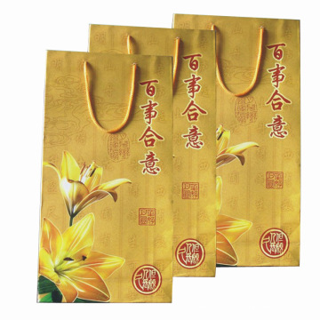 Color Pinting Paper Bag for Shopping and Promotion