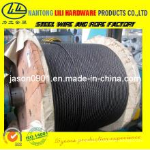 Corde à fil d'acier (usine)