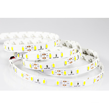 LED Strip Light IP65 100m/Roll 220V 110V Outdoor Use Waterproof High Quality for Garden Party Street
