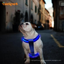 Glow LED-Kabelsatz Dog Pet Flashing Light up
