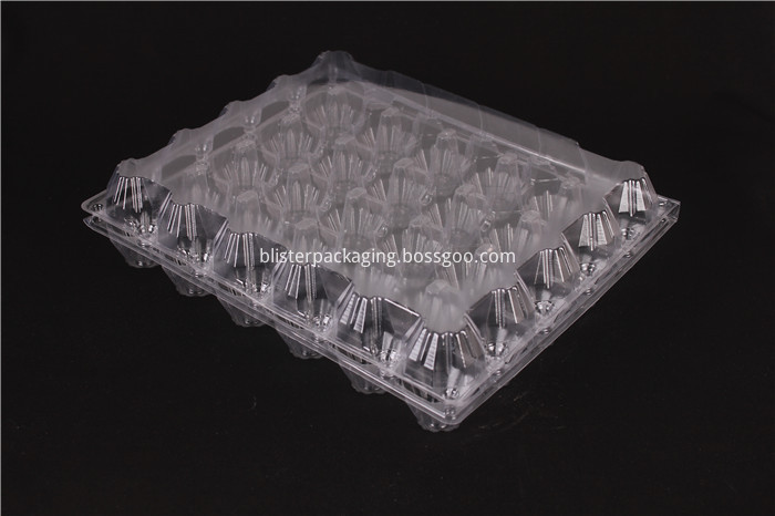 Egg Box Packaging