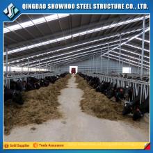 Establos de caballos prefabricados Diseño Estructura de acero Edificios de granja de vacas