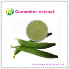 Poudre naturelle de concombre naturelle d'extrait de haute qualité