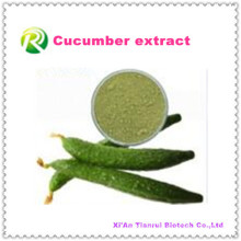 High Quality Natural Plant Extract Natural Cucumber Powder