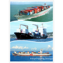 Your Reliable Shipping Agent (20'ft/40'ft/40'HQ) From China to New Zealand