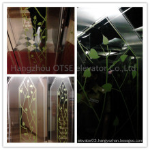 Cheap price for traction residential elevator lift