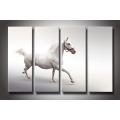 Atacado de Canvas Art Horse Print Painitng