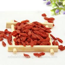 Fruta de bayas de Goji roja no orgánica secada al aire