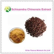 Extrait de plante 100% naturel de haute qualité Schisandra Chinensis Powder