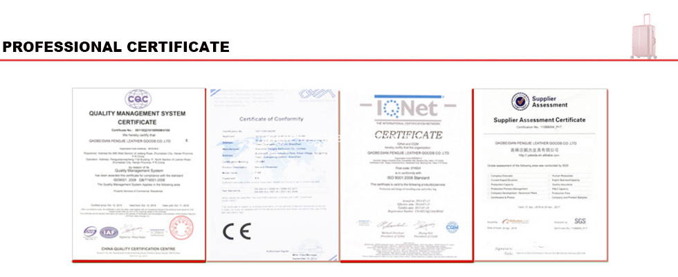 LUGGAGE Professional certificate