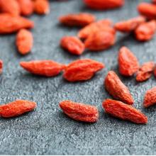 Высокое качество ягоды Годжи/сушеные ягоды Годжи/органический ягоды Годжи на продажу