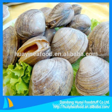 nice quality frozen fresh surf clam with shell sales well on market
