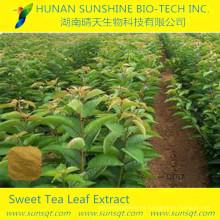 100% edulcorante natural 10% ~ 70% de rubusoside Extracto de té dulce, polvo de rubusoside puro a granel