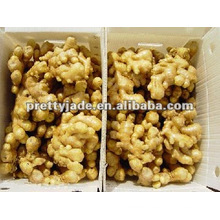 50-200g fresh ginger