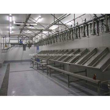 weighing Grading system for poultry processing equipment