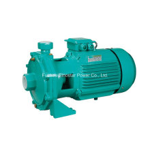 Scm2 Series Double Impellor Centrifual Water Pump for Industry Use