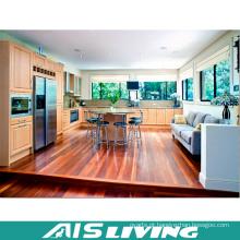 Armários Shaker Home Design Cozinha Armário Mobiliário (AIS-K199)