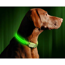 Pets Collars Adjustable Polyester Glow In Night