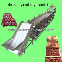 dates grading machine