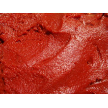 Hot Break Tomato Paste with High Quality