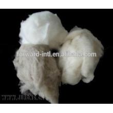 100% Pure Fibre de cachemire peignée mongole intérieure