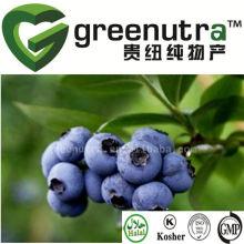 natural acai berry extract powder