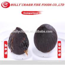 Здоровый и безопасный продукт черный чеснок expoeters в Китае