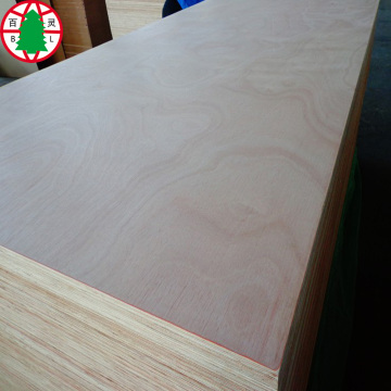 Commerial Plywood 18MM Poplar Core okume chapa bb / cc