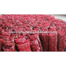 Red Shallot Price 2012