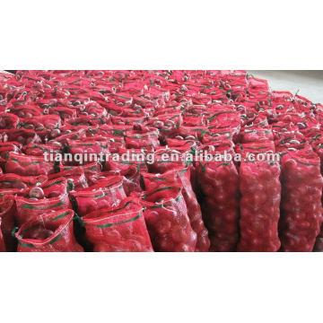 Preço Red Shallot 2012