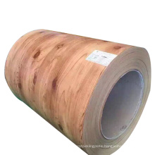 Pre painted Gi Steel Coil Ppgi  DX51D Prepainted Galvanized Rolled Sheet Coil