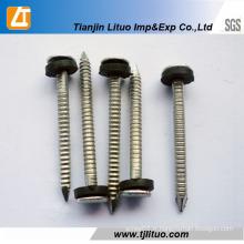 Queue annulaire galvanisée ou clous de bobine de tige de torsion