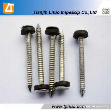 Shank anel anular galvanizado ou torcer bobina Shank Bob
