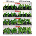 Wholesale LED Grow Lights for Geenhouse