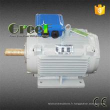Générateur permanent d'aimant de Greef Energy 5kw pour l'usage à la maison
